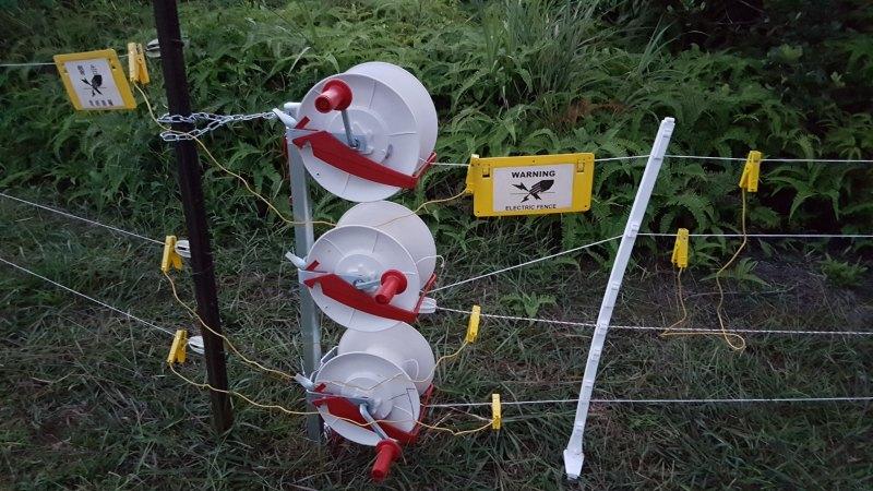 为了防止野猪闯入破坏,电网围栏的运作时间为晚上  :00 至早上  :30